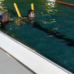 schwimmen_laura2