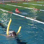 schwimmen_qendresa